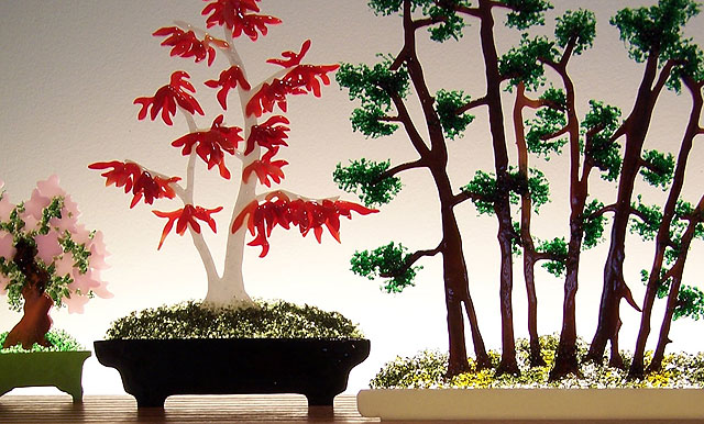 Bonsai Closeup